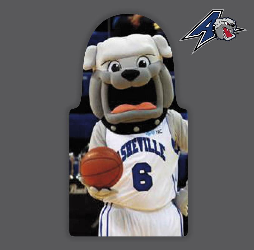 Fans or Pets Package : UNC Asheville