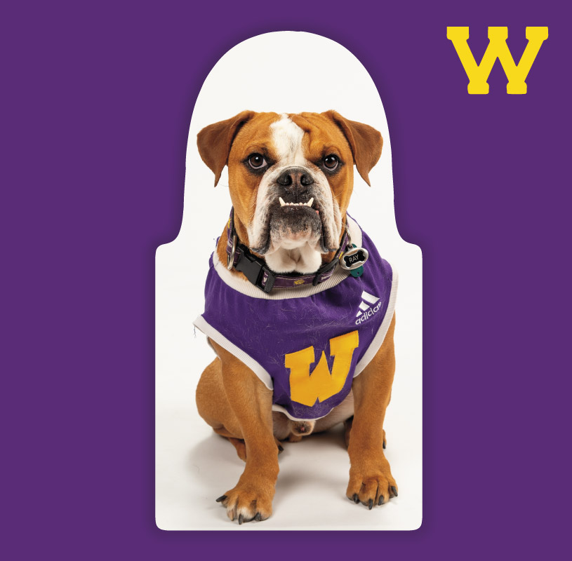 Rockys Premium Package : Western Illinois University